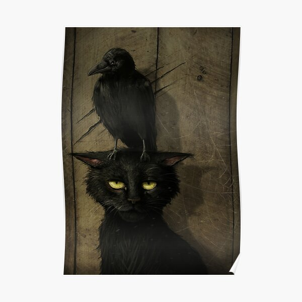 The Raven and the Cat Poster