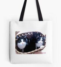 3 Katzen im Korb! Tasche