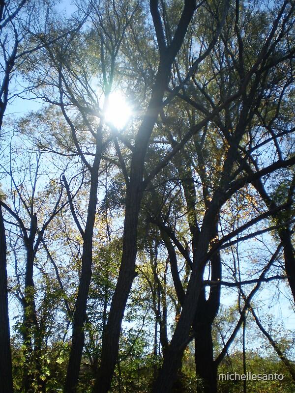 Shining Through by michellesanto