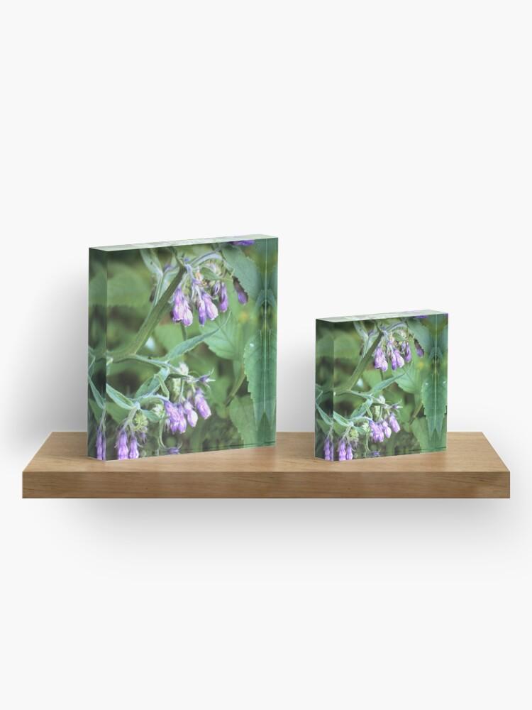 Alternative Ansicht von Beinwell Acrylblock