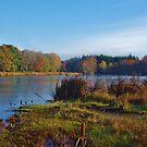 Stover Lake, Autumn by lezvee