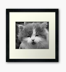 Hee Hee You Funny Woman!! Framed Print