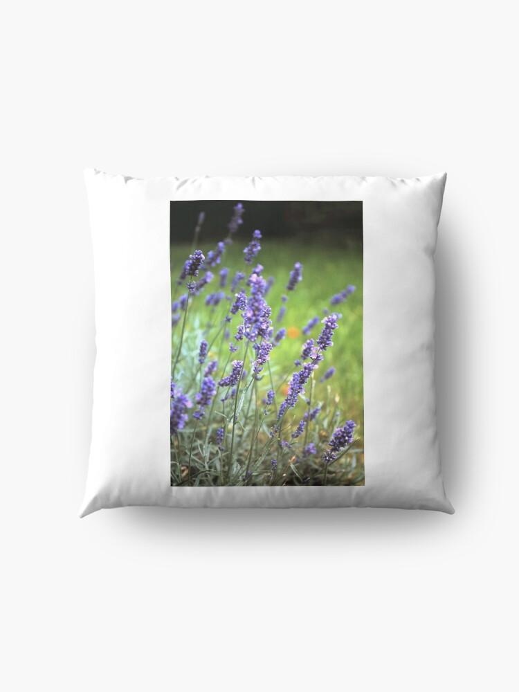 Alternative Ansicht von Der Lavendel Bodenkissen
