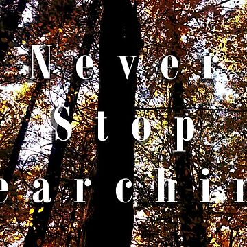 Never Stop Searching by TheCatsPJs