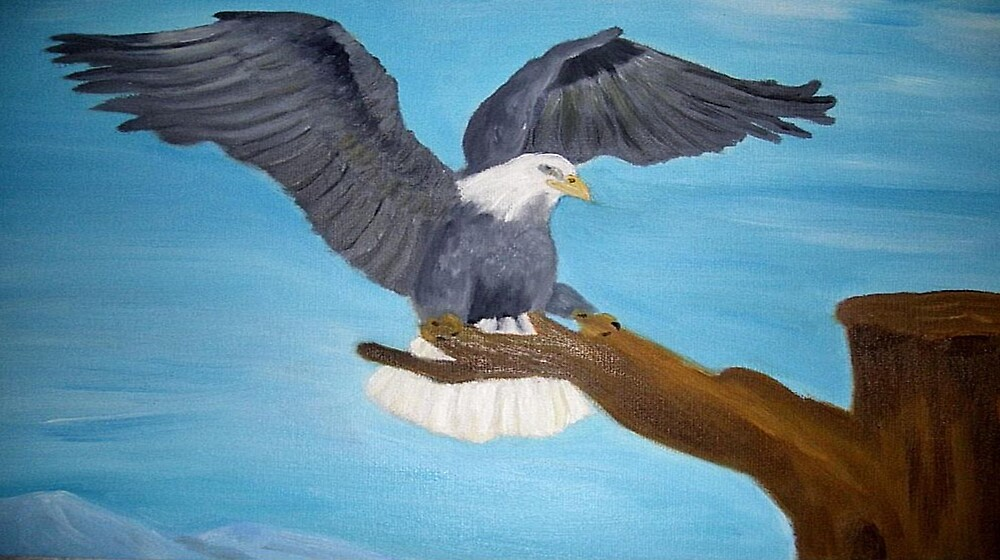 Eagle Landing by christine7