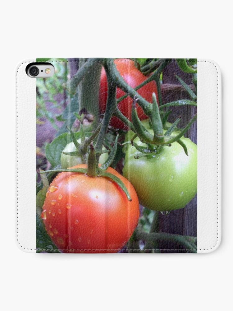 Alternative Ansicht von Leckere Tomaten iPhone Flip-Case