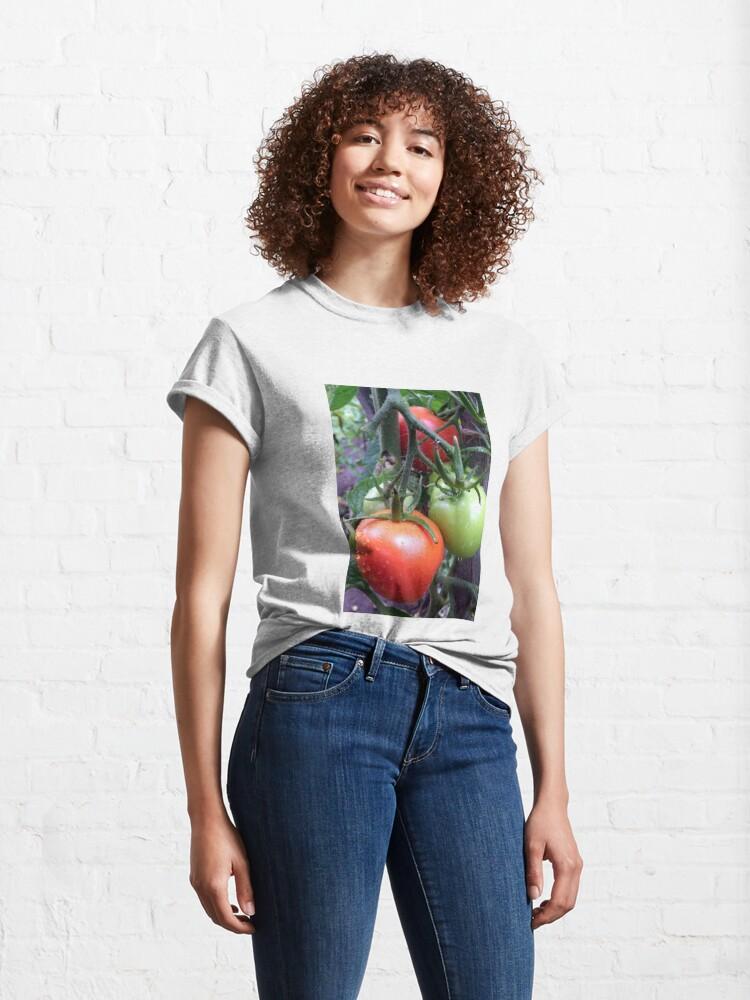 Alternative Ansicht von Leckere Tomaten Classic T-Shirt