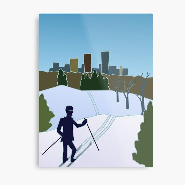 MN Trails Winter 2017  Metal Print