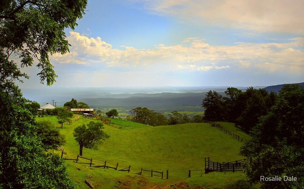 Cambewarra View ~ No 1 by Rosalie Dale