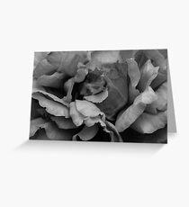 Monochrome Petals Greeting Card