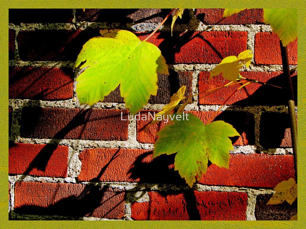 Color me Lemon 2 by LudaNayvelt