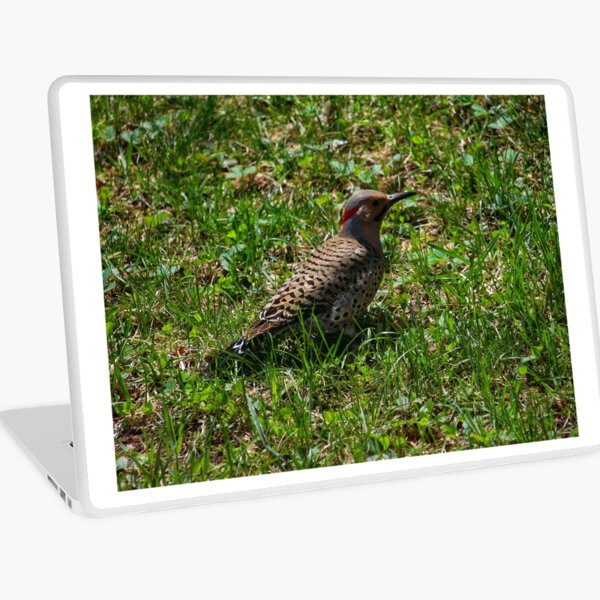 Flicker Laptop Skin