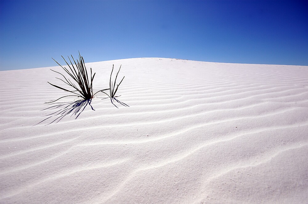 white sands by dogbreath