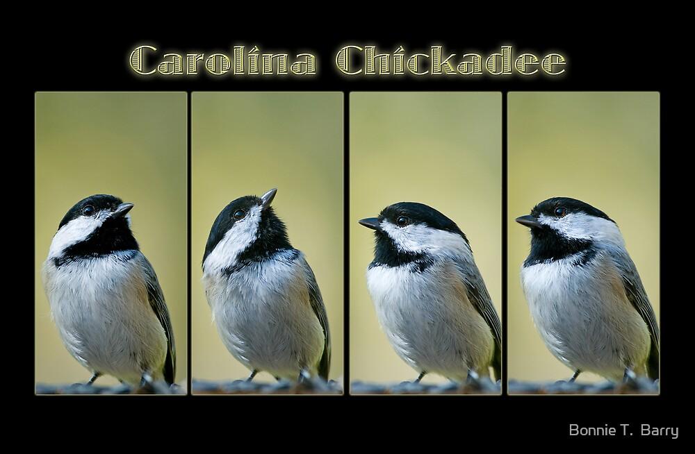 Carolina Chickadee Collage by Bonnie T.  Barry