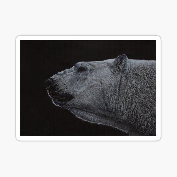 Polar Bear - Black & White Sticker