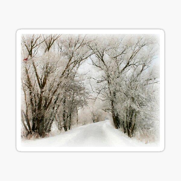 Winter Still Sticker