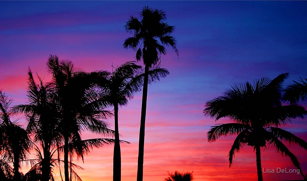 Rainbow sunset by Lisa DeLong
