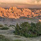 Badlands Scene by April Koehler