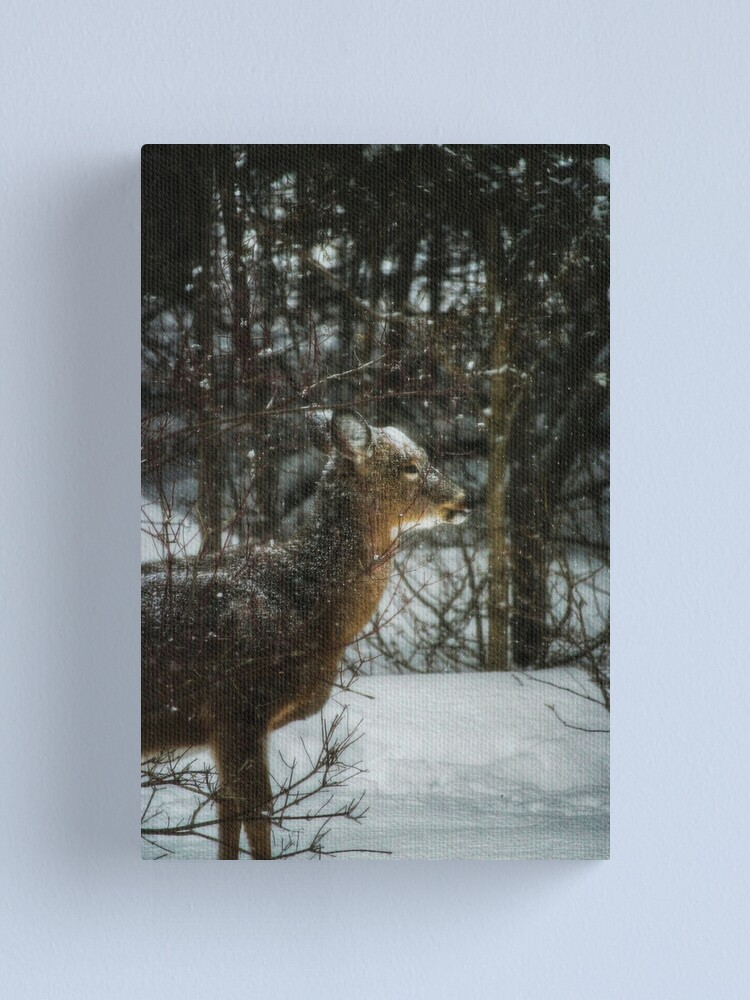 Alternate view of Christmas visitor Canvas Print