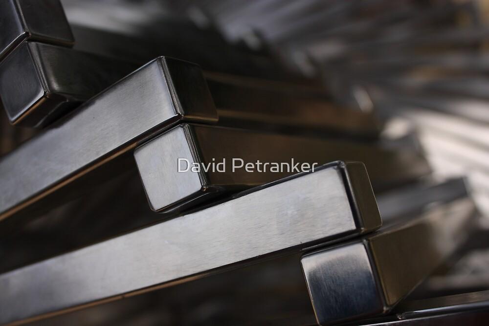 Steel by David Petranker