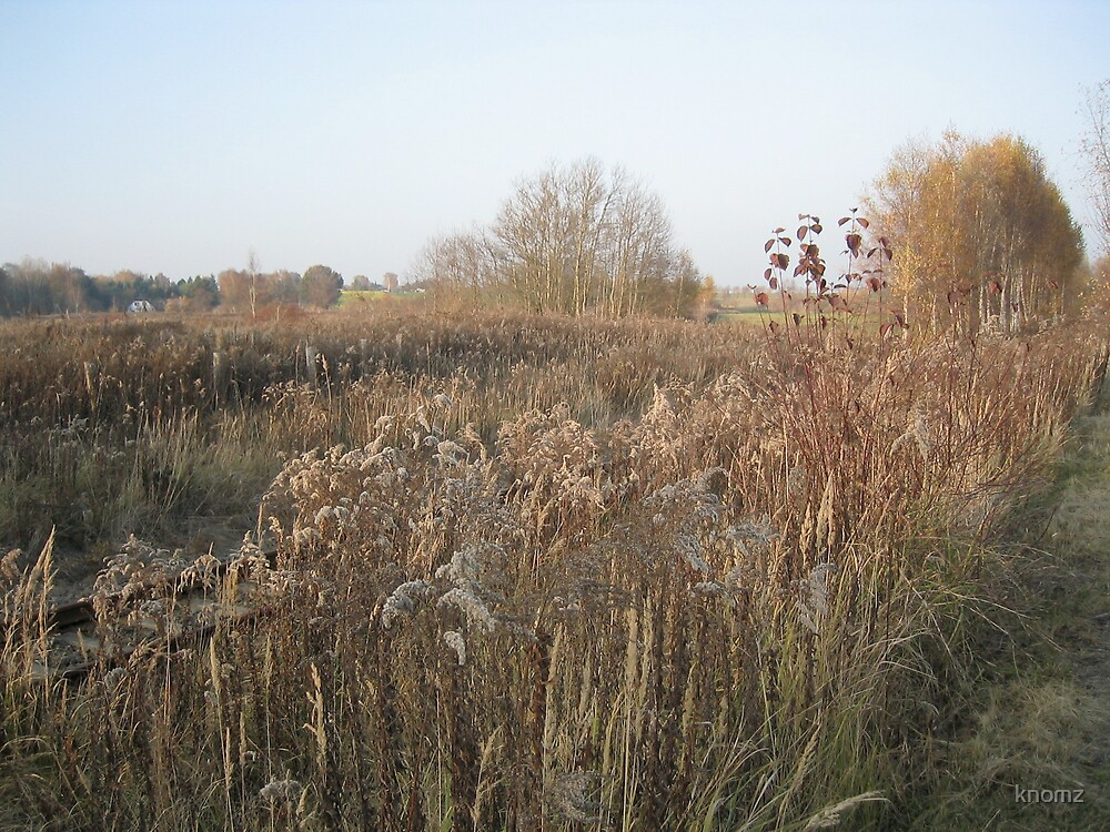 Autumn Weeds by knomz