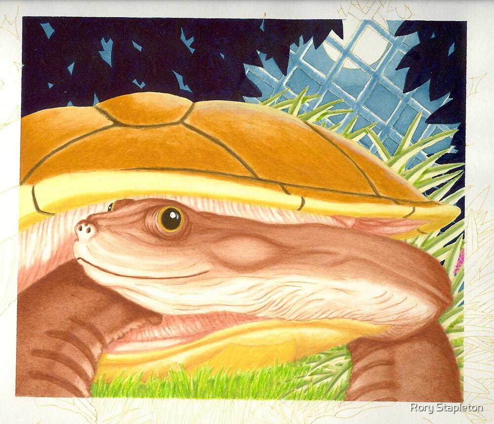 Final page internal (acrylic gouache on Bainbridge brd) Children's early reader by Rory Stapleton
