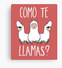 Cute Funny Llama Lover Pun Canvas Print
