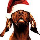 Santa Dog  by hilda74