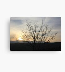 The bitter sunset Canvas Print