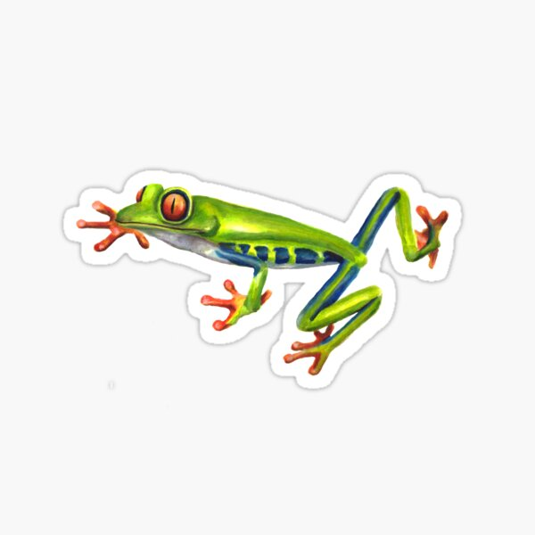 Watercolor Red-Eyed Frog Sticker