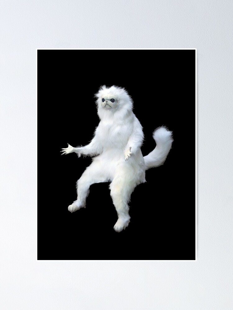 Alternate view of Persian Cat Room Guardian Meme Poster