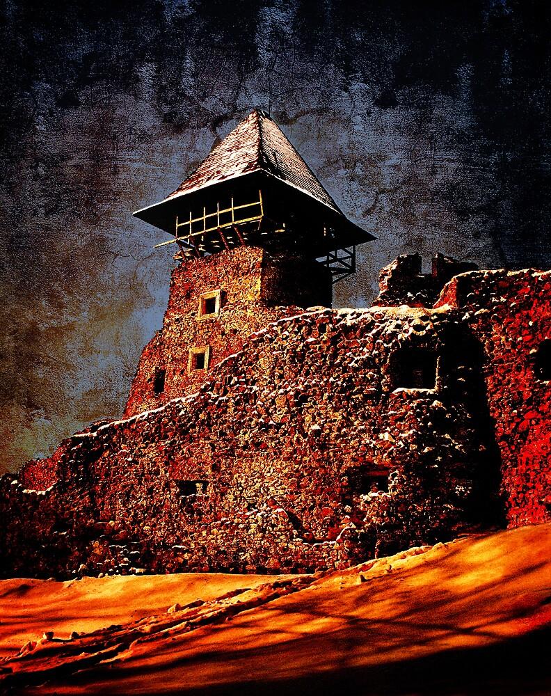 Old Castle 2 by Mikhail Palinchak