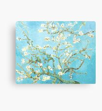 Van Gogh Almond Blossoms, Light Blue Canvas Print