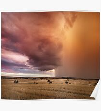 Rain storm captures the colour of sunset, Three Springs, Western Australia Poster