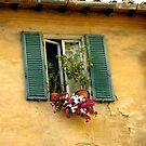 Tuscan window by hans p olsen