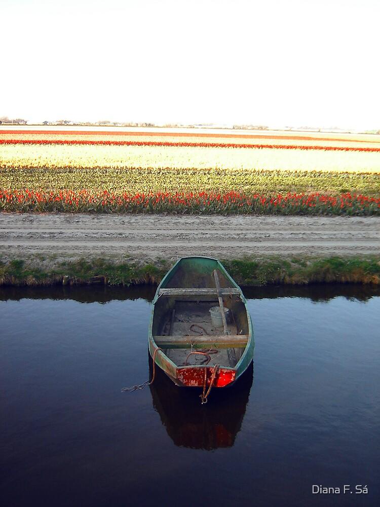 Keukenhof  Serie - Sailing to... by Diana F. Sá