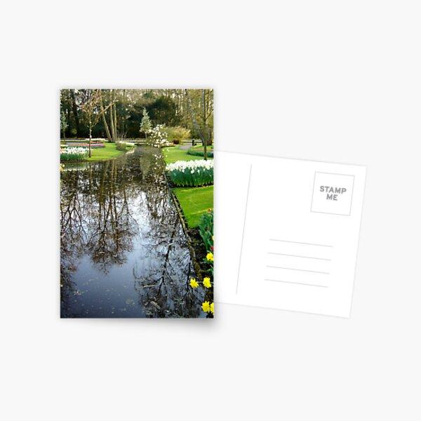 Keukenhof  Serie - Reflecting on the reflections  Postcard