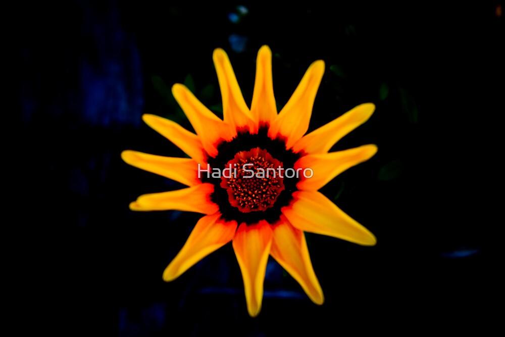 Shinning Star by Hadi Santoro