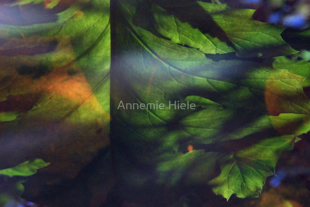 autumn shimmers by Annemie Hiele