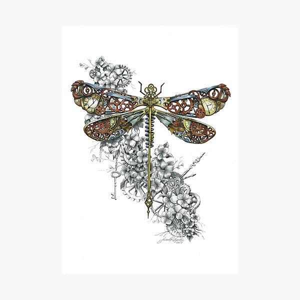 """Clockwork Dragonfly"" Photographic Print"