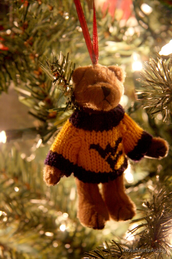 Go Mountaineers by RosaMarieAshby
