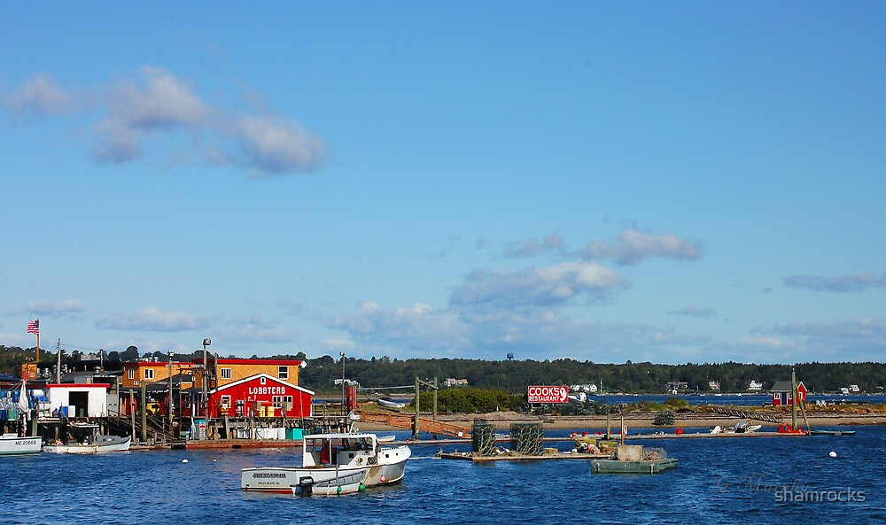 Cooks Island by shamrocks