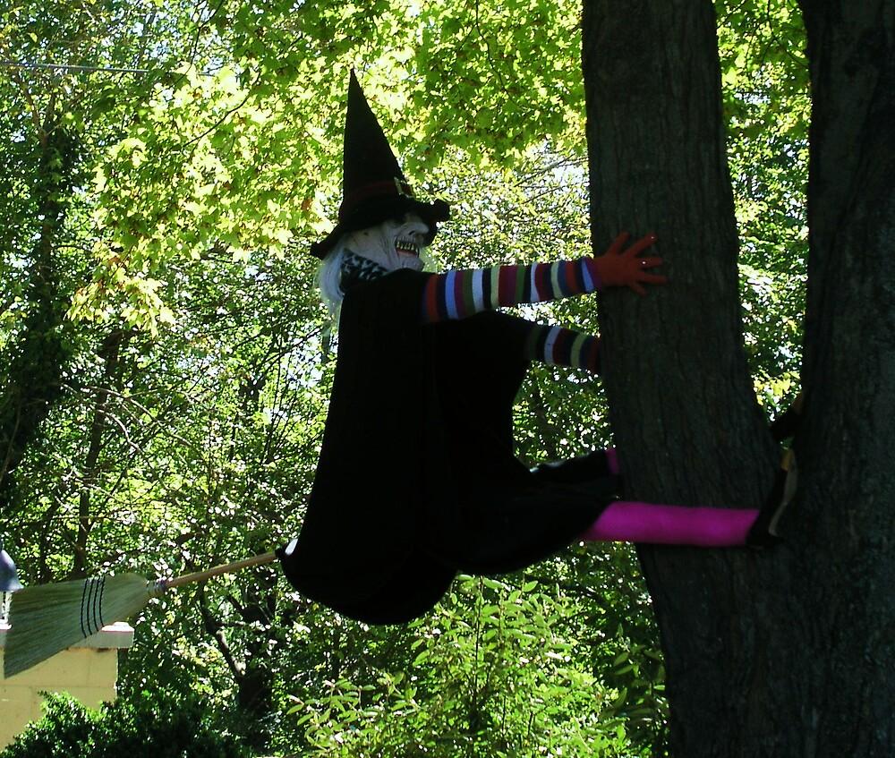 Damn Tree by gayle hoskins-nestor