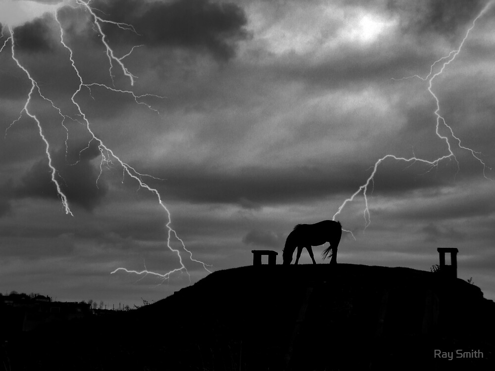 Horse Lightning by Ray Smith