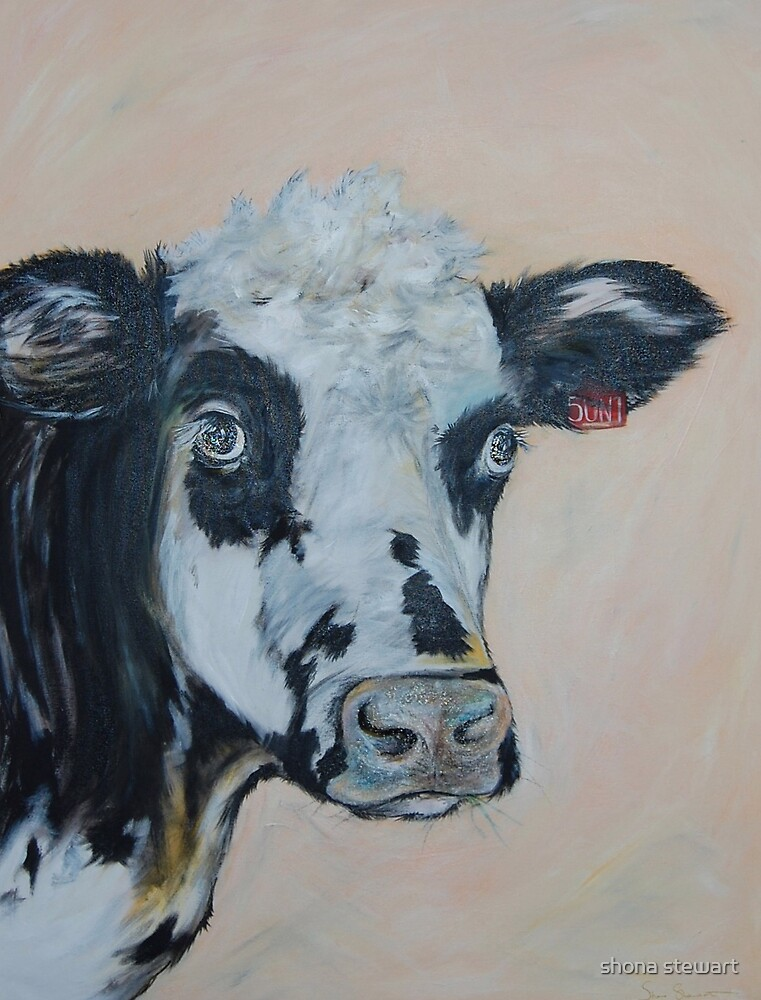Sunny a Hereford cross by shona stewart