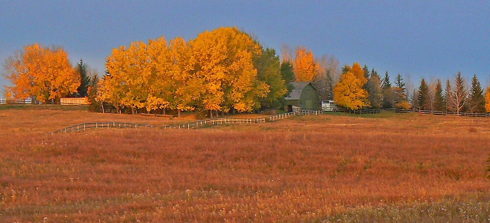 Just the Prairies by BRIAN LEWIS