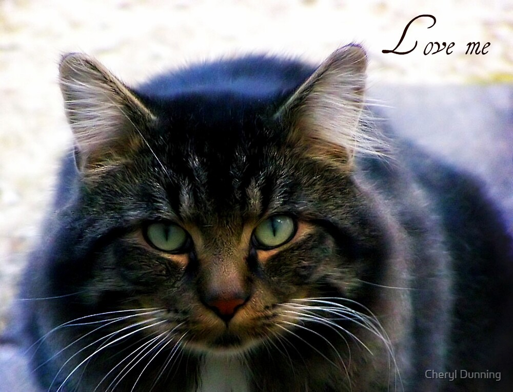Love me by Cheryl Dunning