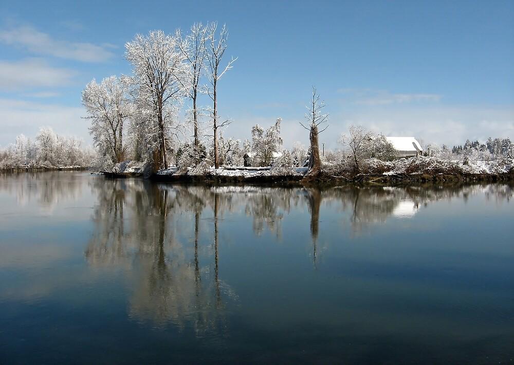After Snow by Corey Bigler