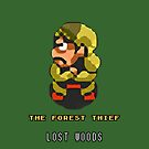 Link to the Past - The Forest Thief by Justin-Case001