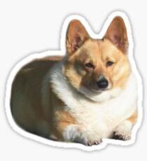 Doggo Stickers: Big Boy Sticker